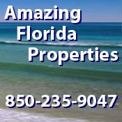 Amazing Florida Properties